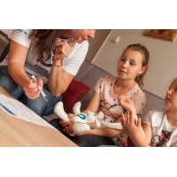 Doučování s Adite pro náhradní rodiny