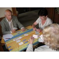 Dobrovolník pro karetní hry se seniory
