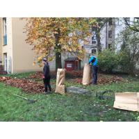 Shrab jírovcového listí na Praze 3