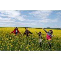 Jaro u nás na Moravě: pojeď na miniworkcamp
