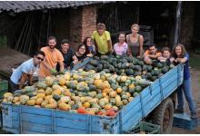 Dobrovolníci díky workcampům věnovali neziskovkám a obcím přes 23 000 hodin práce